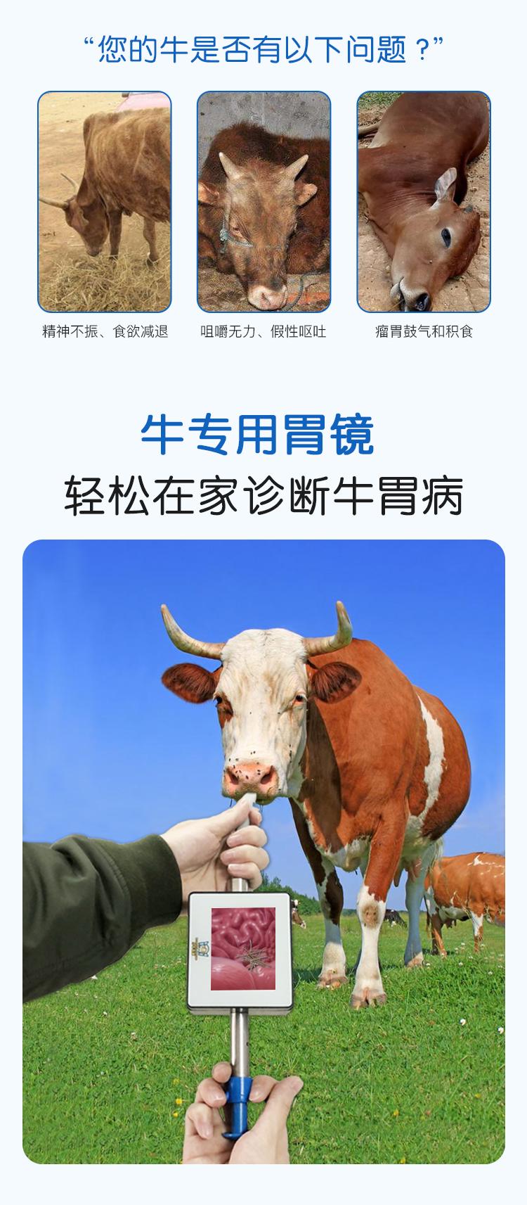 小牛看家—牛用胃镜(取铁器)2