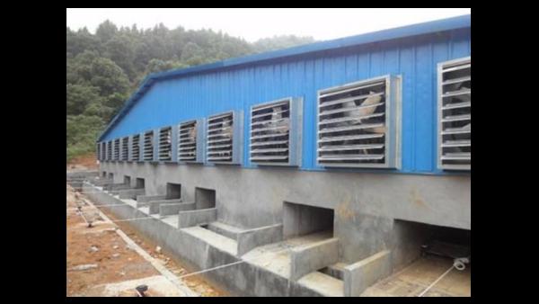 建一个可以养500头肥猪的猪场要投资多少钱?