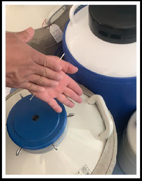 手搓冻精细管