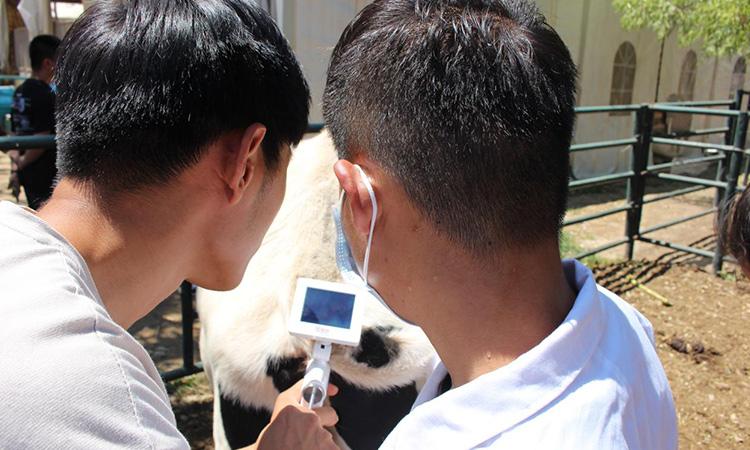 北京畜牧兽医实训园-爱牧多案例