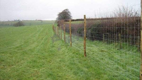 传统网围栏